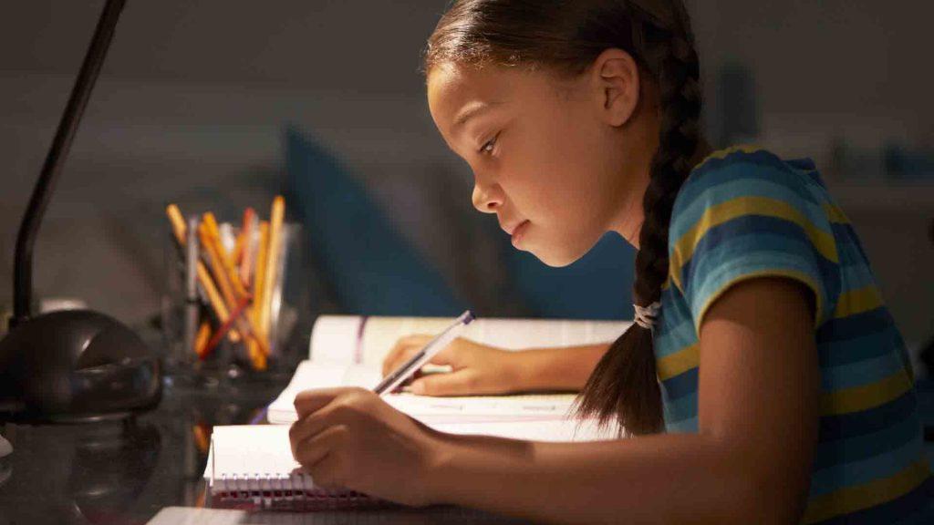 Ödev, Proje, Makale, Tez Hazırlatma