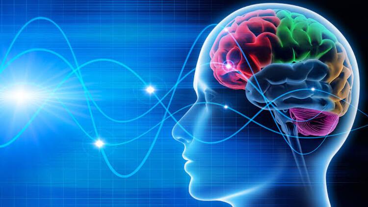 Nöropazarlama (1) – Nöropazarlama Yöntemleri Fiyatları – Nöropazarlama Danışmanlık