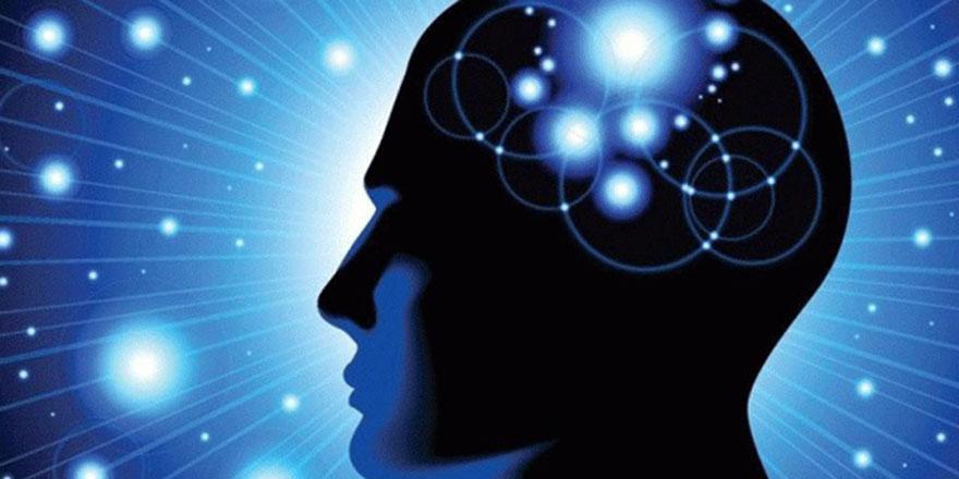 ÇOK KRİTERLİ KARAR VERMEYE GENEL BİR BAKIŞ (5) – Çok Amaçlı Karar Verme Nedir – Çok Amaçlı Karar Verme Yöntemleri – Çok Amaçlı Karar Verme Analizi Yaptırma