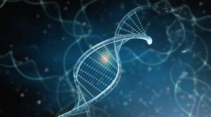 Çeşitli Uygulamalar – Farmasötik Analiz İçin Kapiller Elektroforez Yöntemleri – Ayırma Teknolojisi –FARMASÖTİK ANALİZ – Kimya Mühendisliği – Ayırma Teknolojisi Ödevleri – Kimya Mühendisliği Ödev Yaptırma – Kimya Ödev Yaptırma Ücretleri